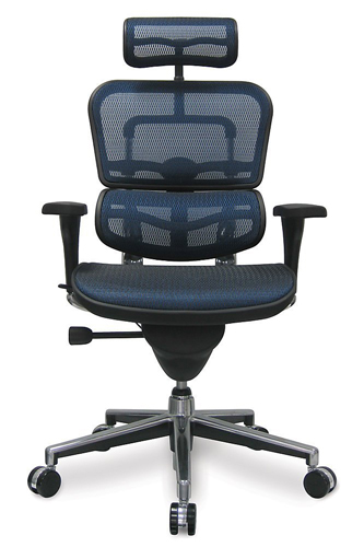 Eurotech-Ergohuman-Mesh-office-Chair.