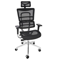 New -Ancheer Mount Ergonomic Desk Chair