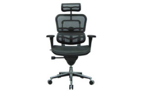 Eurotech Ergohuman Comfy Office Chair Featured Image