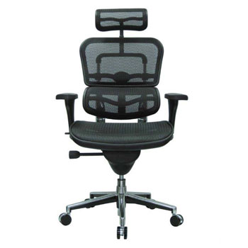 Eurotech Ergohuman Comfy Office Chair
