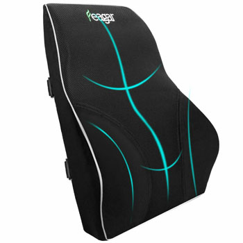 Feagar Lumbar Support Pillow
