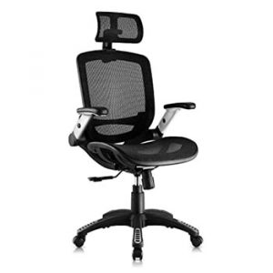 Gabrylly Ergonomic Mesh Office Chair