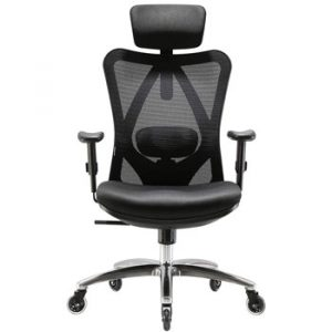 XUER Ergonomics Office Chair