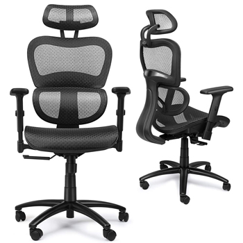 Ergousit Ergonomic Office Desk Chair