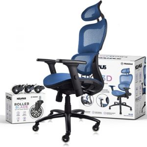 NEUHAUS Ergo3D Ergonomic Office Chair